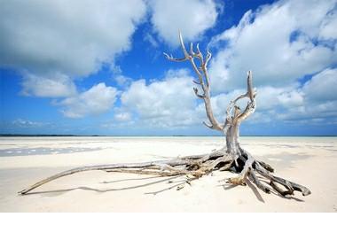 North end, bayside beach at Bahamas