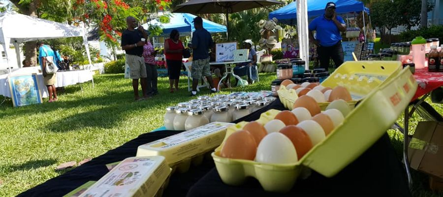 Harbour Island's Fresh Picks Farmers Market & Artisan Showcase to return in November